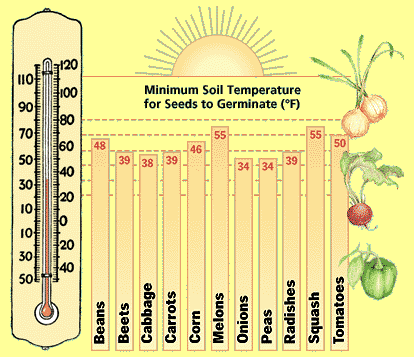 Soil Temp Chart